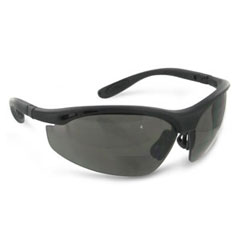 Radians CH1215 Cheaters Bi-Focal Smoke 1.5X Safety Glasses CH1215